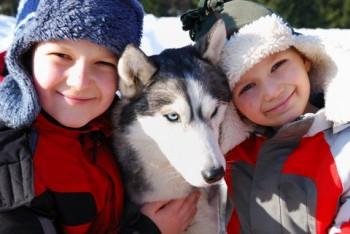 kids-husky