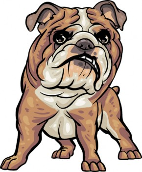 art bulldog