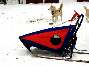 racing sledge