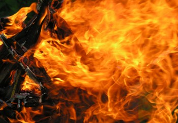 http://www.dreamstime.com/stock-photo-fire-flame-image15604760