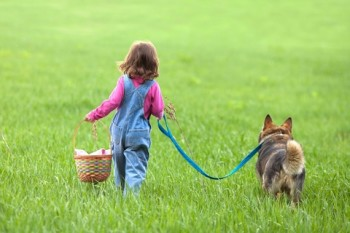 http://www.dreamstime.com/stock-photography-girl-walking-dog-little-field-back-to-camera-image31013582