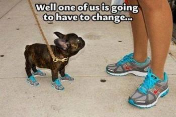 The blue shoe memo