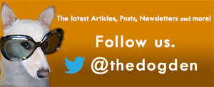 The Dog Den | Twitter